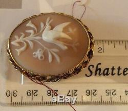 1 3/4 Victorian c. 1880 shell Cameo Antique Animal Bird nature Estate Pin gold