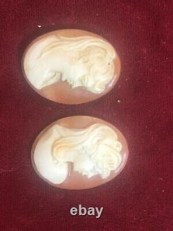Antique Estate Find Pair Of 3 Carved Cameo Victorian Shell Profile Of Woman